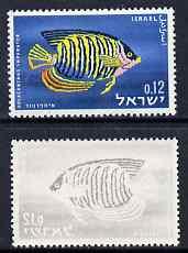 Israel 1963 Fish 12a with fne offset of black on gummed side, unmounted mint and most unusual