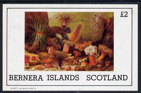 Bernera 1982 Marine Life imperf deluxe sheet (�2 value) unmounted mint