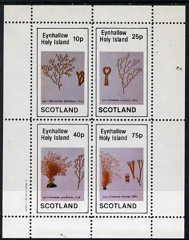 Eynhallow 1982 Sea Weed perf  set of 4 values (10p to 75p) unmounted mint