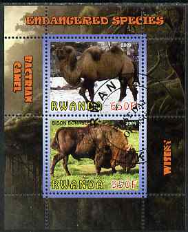 Rwanda 2009 Endangered Species - Wisent & Camel perf sheetlet containing 2 values fine cto used