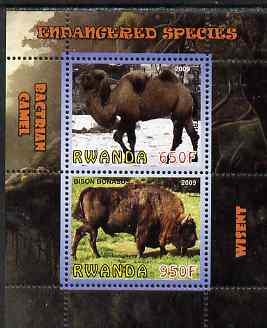 Rwanda 2009 Endangered Species - Wisent & Camel perf sheetlet containing 2 values unmounted mint