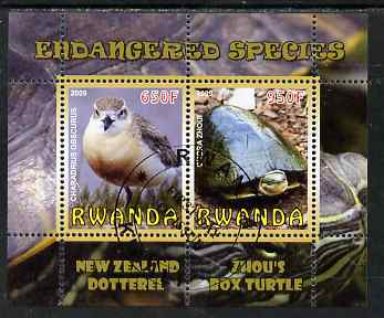 Rwanda 2009 Endangered Species - New Zealand Dotterel & Box Turtle perf sheetlet containing 2 values fine cto used, stamps on animals, stamps on birds, stamps on turtles