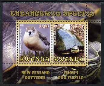 Rwanda 2009 Endangered Species - New Zealand Dotterel & Box Turtle perf sheetlet containing 2 values unmounted mint