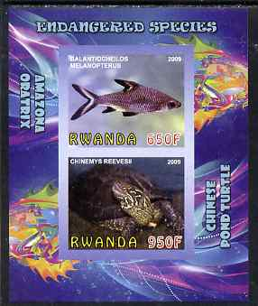 Rwanda 2009 Endangered Species - Pond Turtle & Silver Shark (inscribed Oratrix in error) imperf sheetlet containing 2 values unmounted mint, stamps on animals, stamps on fish, stamps on sharks, stamps on turtles