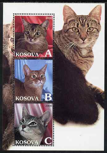 Kosova 2000 Domestic Cats perf sheetlet containing set of 3 values unmounted mint