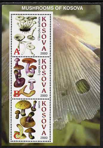 Kosova 2000 Mushrooms #2 perf sheetlet containing 3 values unmounted mint