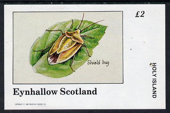 Eynhallow 1982 Insects (Shield Bug) imperf deluxe sheet (�2 value) unmounted mint