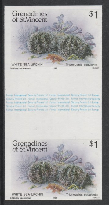 St Vincent - Grenadines 1985 Shell Fish $1 (Sea Urchin) imperf gutter pair (from uncut archive sheet) unmounted mint, SG 362var. Note: The design withing the gutter varies across the sheet, therefore, the one you receive  may differ from that shown in the illustration.