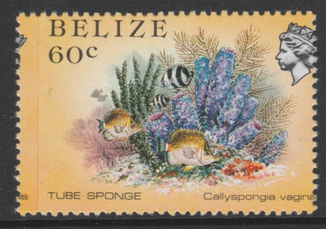 Belize 1984-88 Tube Sponge 60c def with a fine 3.5mm shift of vert perfs (Queen's head is split) unmounted mint as SG 776