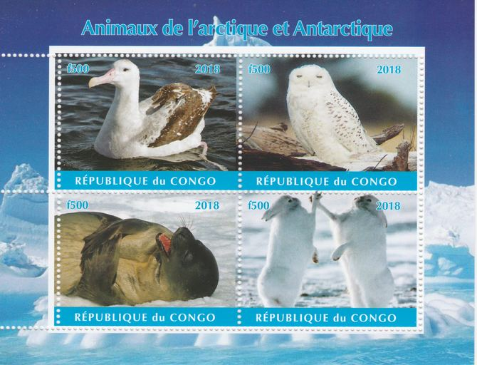 Congo 2018 Polar Animals & Birds #1 perf sheetlet containing 4 values unmounted mint