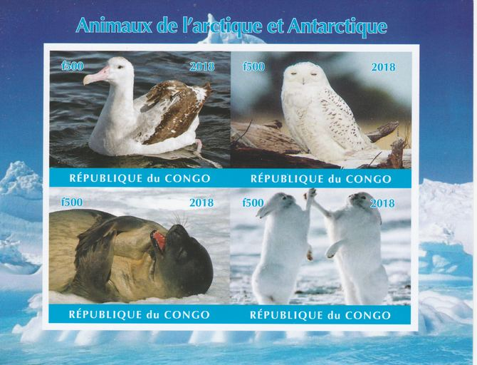 Congo 2018 Polar Animals & Birds #1 imperf sheetlet containing 4 values unmounted mint