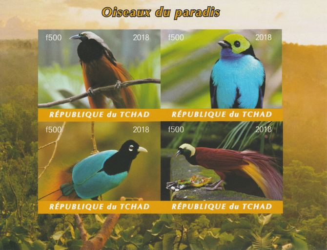Chad 2018 Birds of Paradise imperf sheetlet containing 4 values unmounted mint. Note this item is privately produced and is offered purely on its thematic appeal, it has ...