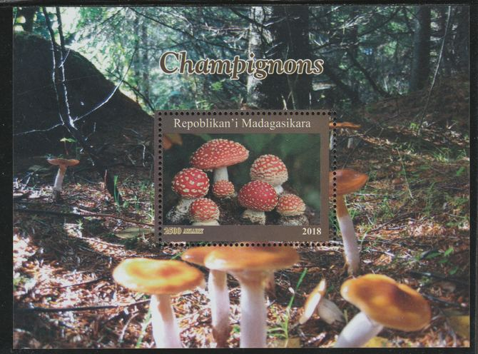 Madagascar 2018 Fungi perf souvenir sheet unmounted mint. Note this item is privately produced and is offered purely on its thematic appeal.