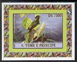 St Thomas & Prince Islands 2007 Birds #1 - Trogon imperf individual deluxe sheet unmounted mint. Note this item is privately produced and is offered purely on its thematic appeal