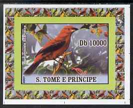 St Thomas & Prince Islands 2007 Birds #4 - Toucan imperf individual deluxe sheet unmounted mint. Note this item is privately produced and is offered purely on its thematic appeal