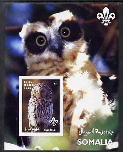 Somalia 2002 Owls #2 imperf s/sheet with Scouts Logo, unmounted mint. Note this item is privately produced and is offered purely on its thematic appeal