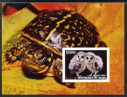 Benin 2004 Owls & Tortoises imperf s/sheet #3 unmounted mint. Note this item is privately produced and is offered purely on its thematic appeal