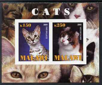 Malawi 2009 Cats #1 imperf sheetlet containing 2 values (Egyptian Mau & American Curl) unmounted mint, stamps on cats
