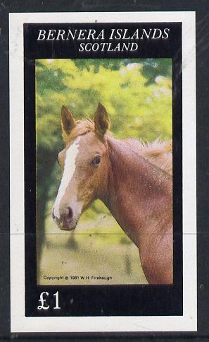 Bernera 1981 Horses imperf souvenir sheet (�1 value) unmounted mint