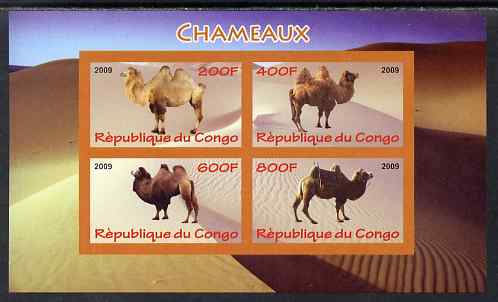 Congo 2009 Camels imperf sheetlet containing 4 values unmounted mint