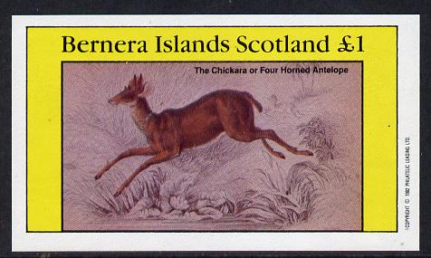 Bernera 1982 Animals (Four Horned Antelope) imperf souvenir sheet (�1 value) unmounted mint