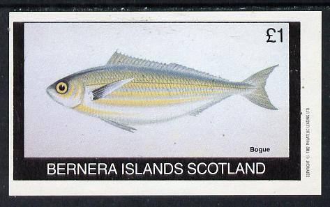 Bernera 1982 Fish (Bogue) imperf souvenir sheet (�1 value) unmounted mint