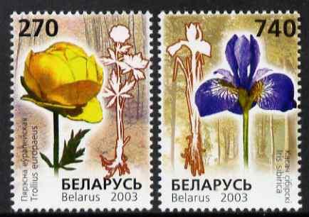 Belarus 2003 Endangered Flora perf set of 2 unmounted mint SG 546-7
