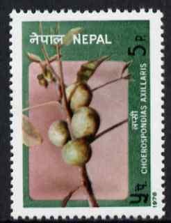 Nepal 1978 Lapsi Fruit 5p unmounted mint, SG 368
