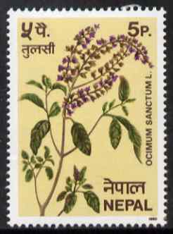 Nepal 1980 Sacred Basil (herb) 5p unmounted mint, SG 396, stamps on herbs, stamps on food