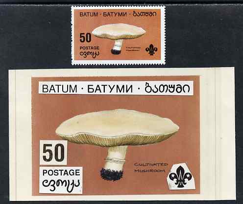 Batum 1994 Fungi - Cultivated Mushroom 50r with Scout emblem, original hand-painted atywork on card 90 mm x 65 mm with overlay plus issued stamp. Note this item is privat...