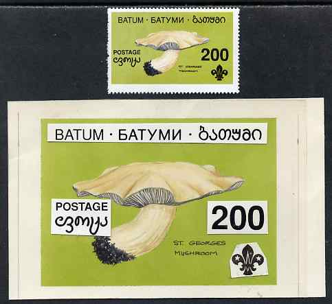 Batum 1994 Fungi - St Georges Mushroom 200r with Scout emblem, original hand-painted atywork on card 90 mm x 65 mm with overlay plus issued stamp. Note this item is priva...