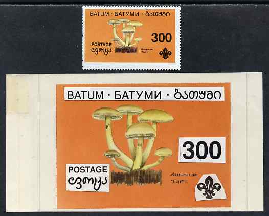 Batum 1994 Fungi - Sulphur Tuft 300r with Scout emblem, original hand-painted atywork on card 90 mm x 65 mm with overlay plus issued stamp. Note this item is privately pr...