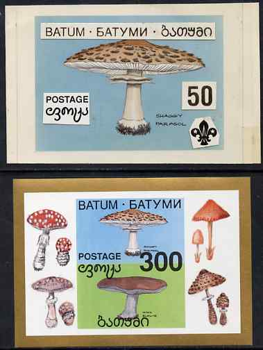 Batum 1994 Fungi - Shaggy Parasol with Scout emblem, original hand-painted atywork on card 90 mm x 65 mm with overlay denominated 50r but used for 300r s/sheet which is i...