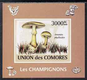 Comoro Islands 2009 Mushrooms imperf s/sheet unmounted mint. Note this item is privately produced and is offered purely on its thematic appeal, it has no postal validity