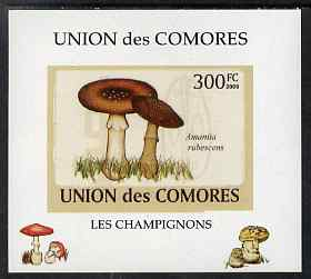 Comoro Islands 2009 Fungi #4 - 300 FC individual imperf deluxe sheet unmounted mint. Note this item is privately produced and is offered purely on its thematic appeal, it has no postal validity