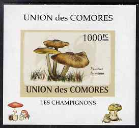Comoro Islands 2009 Fungi #6 - 1000 FC individual imperf deluxe sheet unmounted mint. Note this item is privately produced and is offered purely on its thematic appeal, it has no postal validity