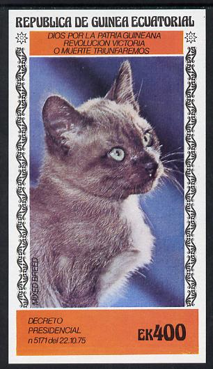 Equatorial Guinea 1978 Domestic Cats 400ek imperf m/sheet (Mixed Breed) unmounted mint