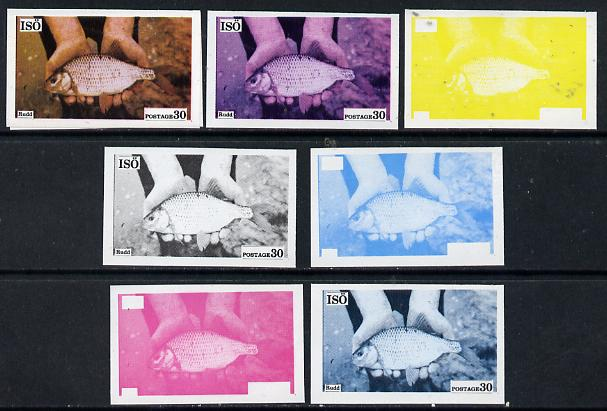 Iso - Sweden 1973 Fish 30 (Rudd) set of 7 imperf progressive colour proofs comprising the 4 individual colours plus 2, 3 and all 4-colour composites unmounted mint
