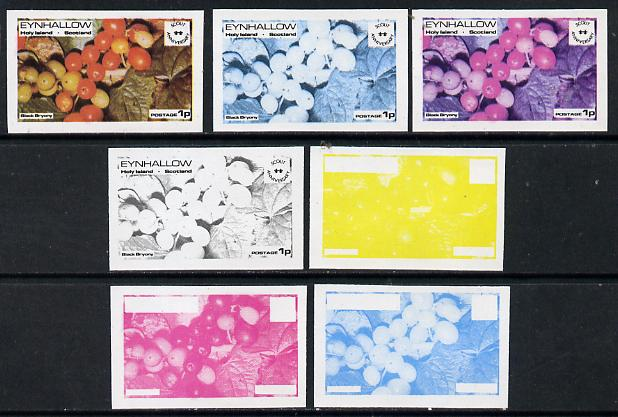 Eynhallow 1974 Fruit (Scout Anniversary) 1p (Black Bryony) set of 7 imperf progressive colour proofs comprising the 4 individual colours plus 2, 3 and all 4-colour composites unmounted mint