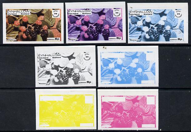 Eynhallow 1974 Fruit (Scout Anniversary) 6p (Blackberry) set of 7 imperf progressive colour proofs comprising the 4 individual colours plus 2, 3 and all 4-colour composites unmounted mint