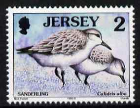Jersey 1997-99 Seabirds & Waders 2p Sanderling unmounted mint SG 775