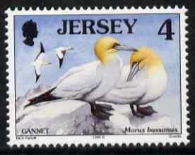 Jersey 1997-99 Seabirds & Waders 4p Northern Gannet unmounted mint SG 776