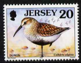 Jersey 1997-99 Seabirds & Waders 20p Dunlin unmounted mint SG 780