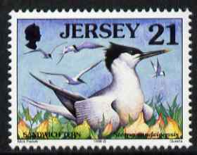 Jersey 1997-99 Seabirds & Waders 21p Sandwich Tern unmounted mint SG 781