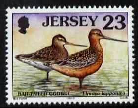 Jersey 1997-99 Seabirds & Waders 23p Bar-tailed Godwit unmounted mint SG 783