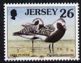 Jersey 1997-99 Seabirds & Waders 26p Grey Plover unmounted mint SG 786