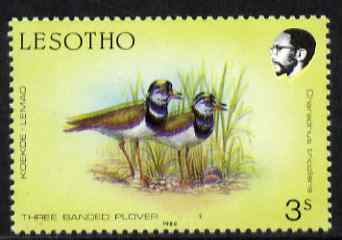 Lesotho 1988 Birds 3s Plover minor colour shift resulting in two birds unmounted mint  SG 792var (not so pronounced as #57289)