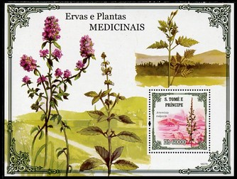 St Thomas & Prince Islands 2009 Medical Plants perf s/sheet unmounted mint