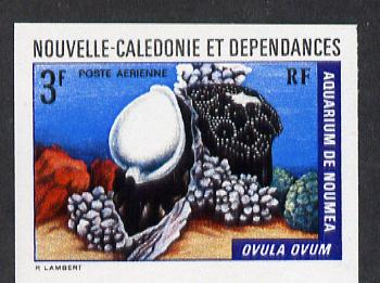 New Caledonia 1974 Marine Fauna 3f (Ovula Shell) imperf proof from limited printing unmounted mint, SG 519*