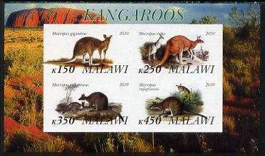 Malawi 2010 Kangaroos imperf sheetlet containing 4 values unmounted mint